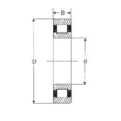 110 mm x 200 mm x 38 mm  SIGMA N 222 cylindrical roller bearings