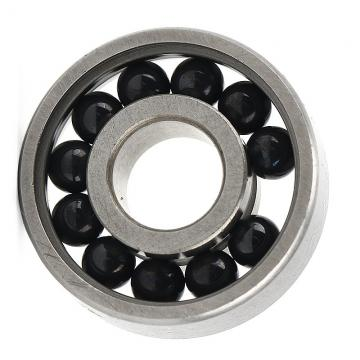 Hybrid Ceramic Stainless Steel Ball Bearing (608 6000 6001 6006 2RS)