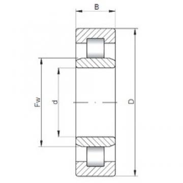 300 mm x 500 mm x 160 mm  Loyal NU3160 cylindrical roller bearings